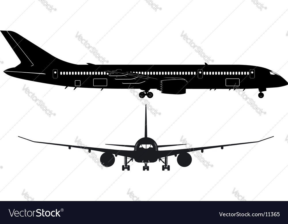 Boeing 787 Dreamliner vector image