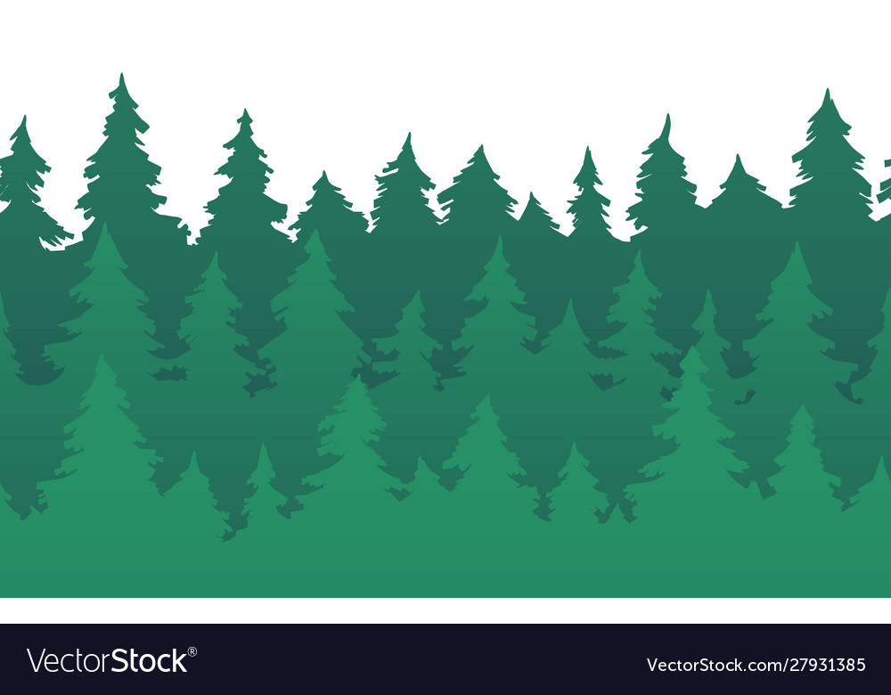 Forest fir trees seamless pattern pine silhouette