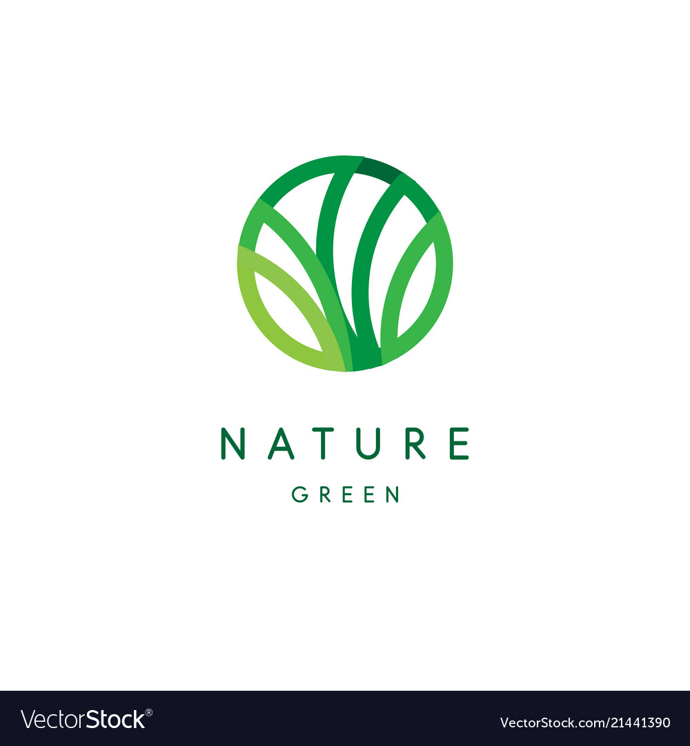 Nature logo green tropical leaves icon line