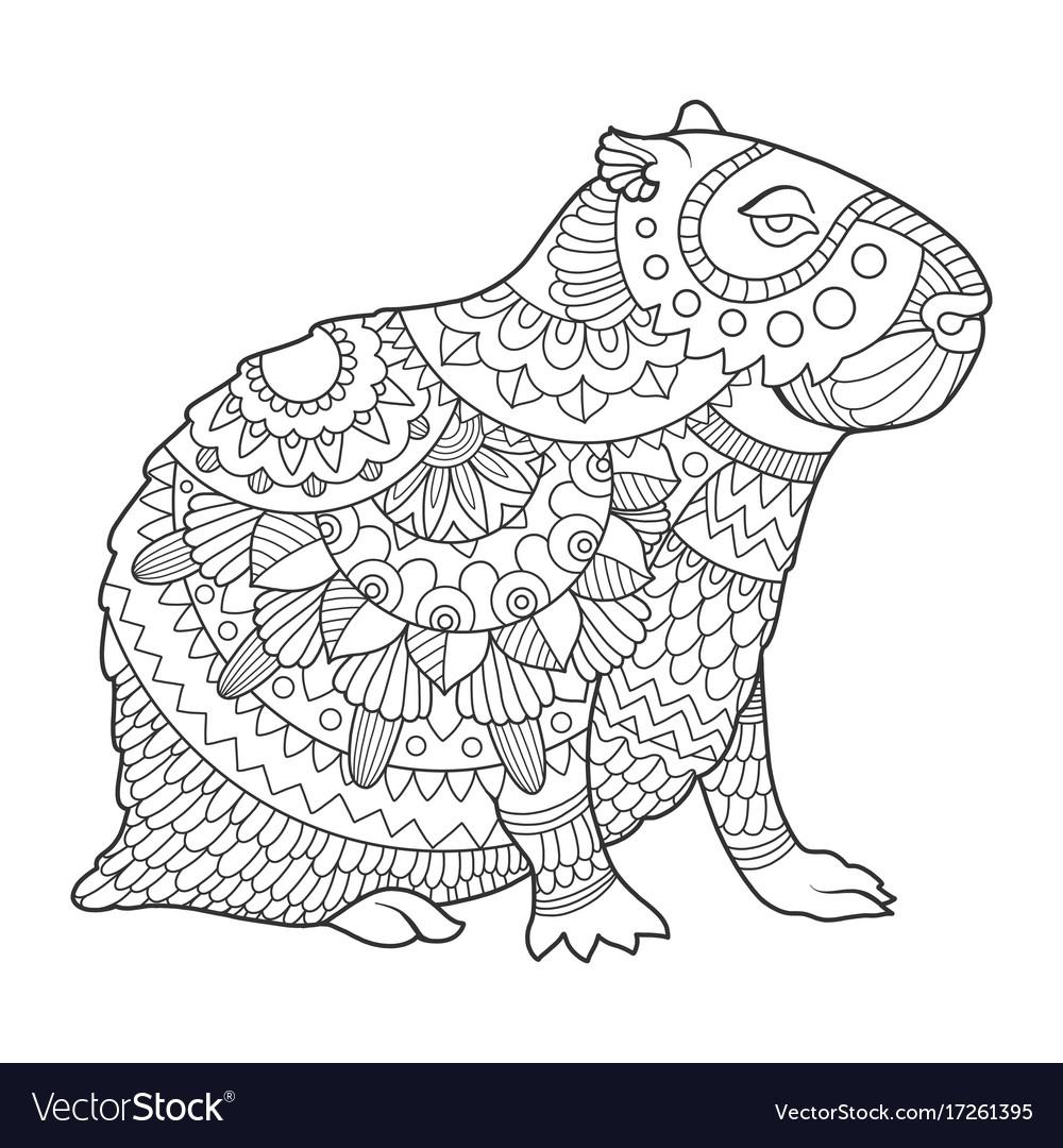 Capybara coloring book Royalty Free Vector Image