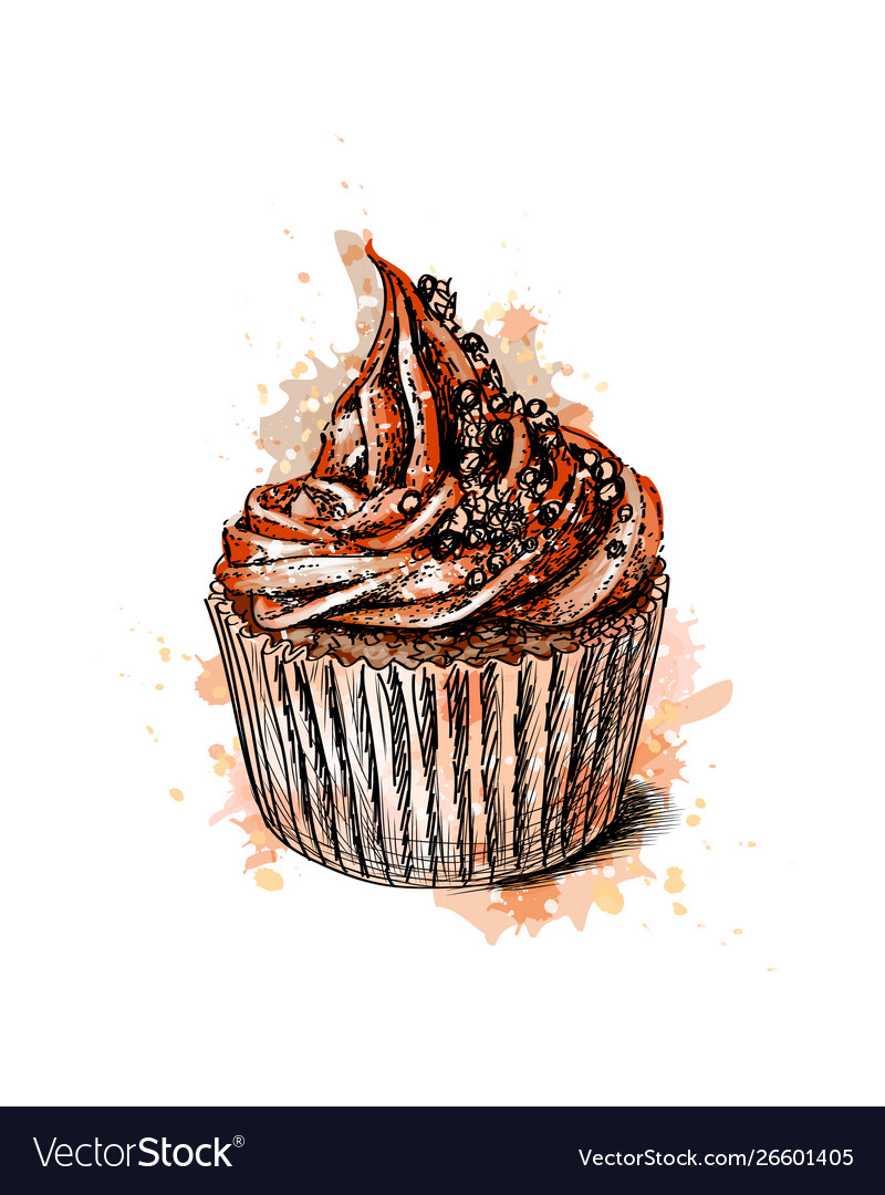 Chocolate cupcake from a splash watercolor