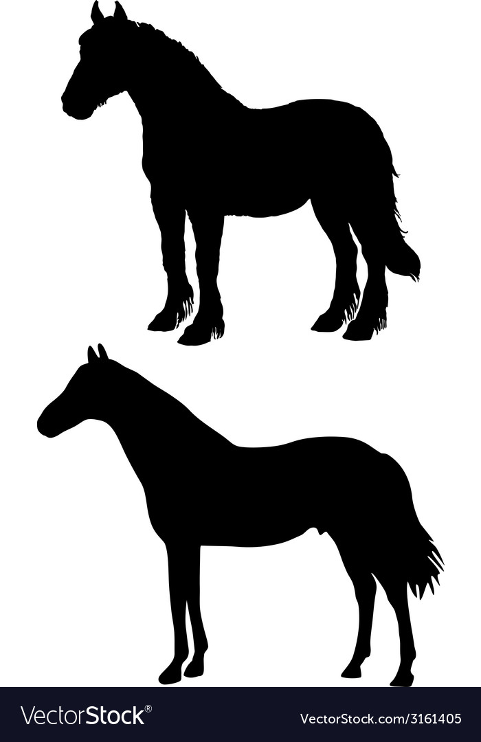 Draft Horse Silhouette Vector Images 23