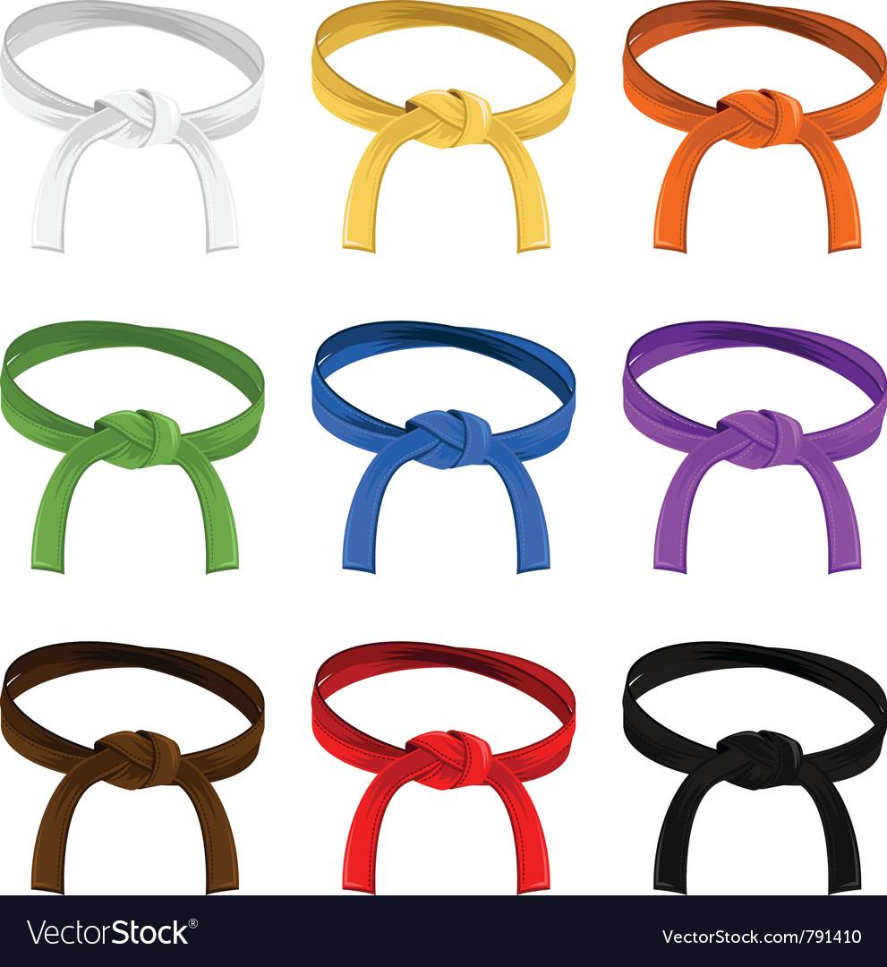 Martial art belt rank system vector image