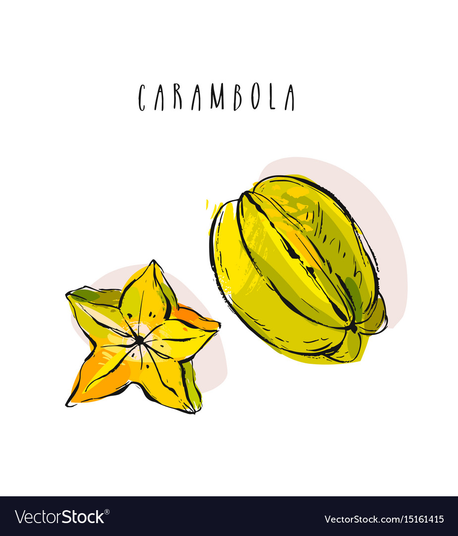 Hand drawn abstract exotic tropical fruit