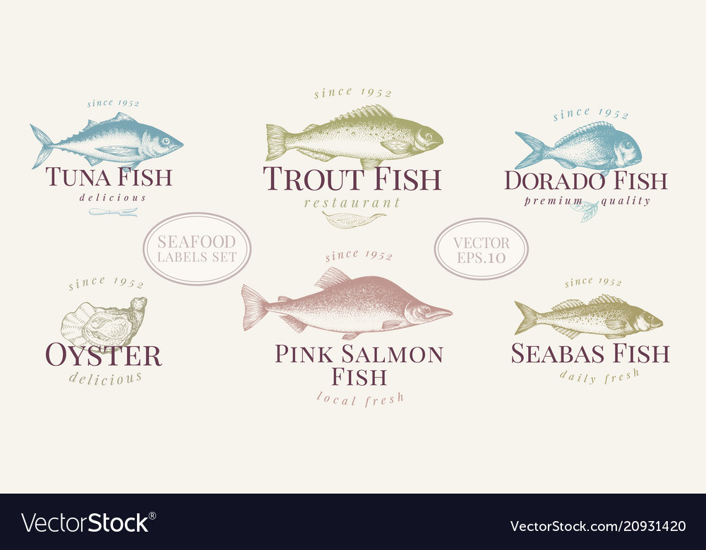 Hand drawn fish and seafood labels set in retro