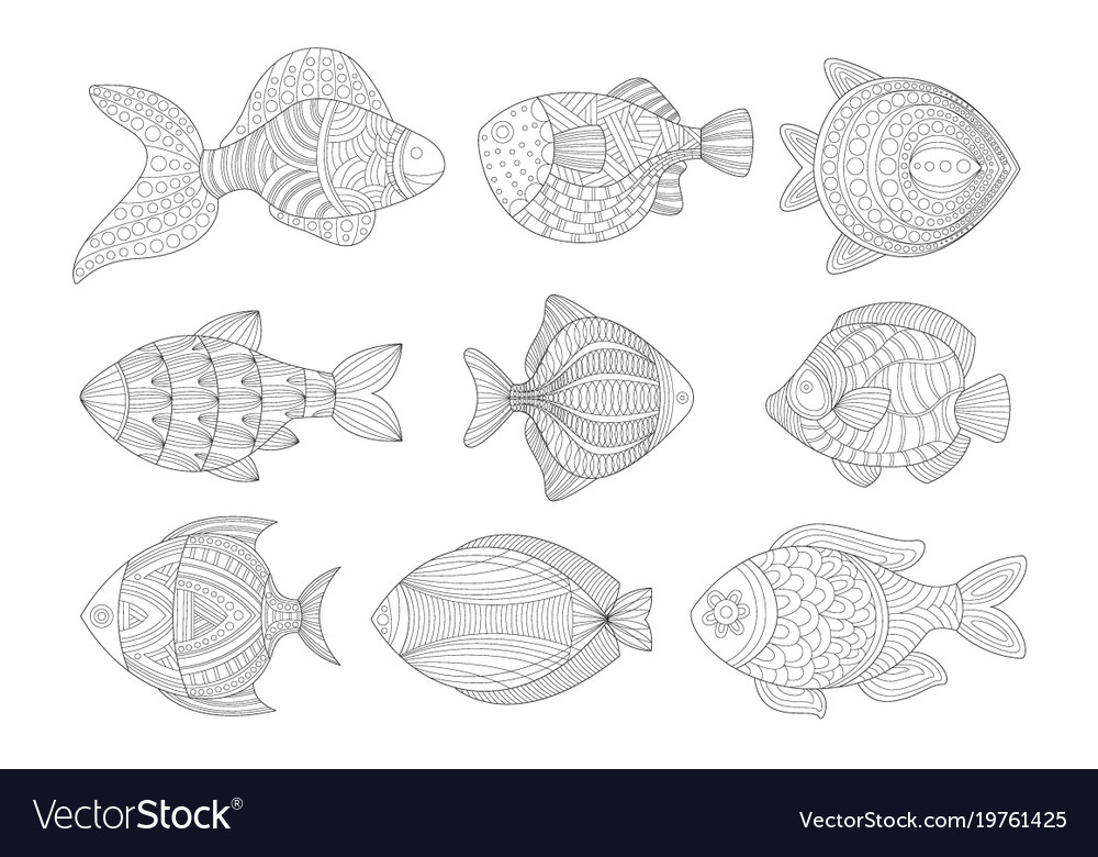 Tropical fish set adult zentangle coloring book