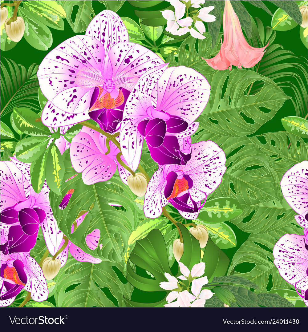 Seamless texture tropical flowers orchid