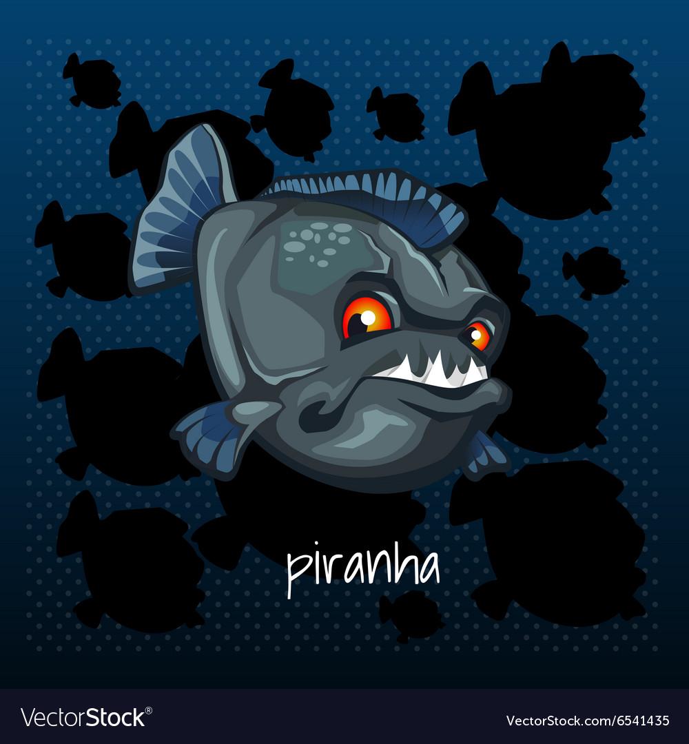Carnivorous piranha grins on a dark background