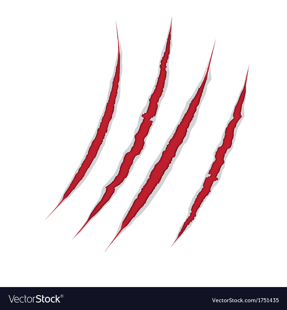 Claws scratch on paper background damage vector image