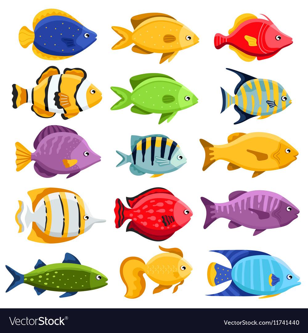 Colorful reef tropical fish set