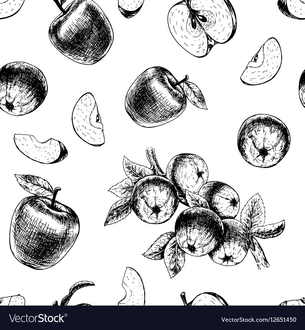 Seamless pattern with apples sketch