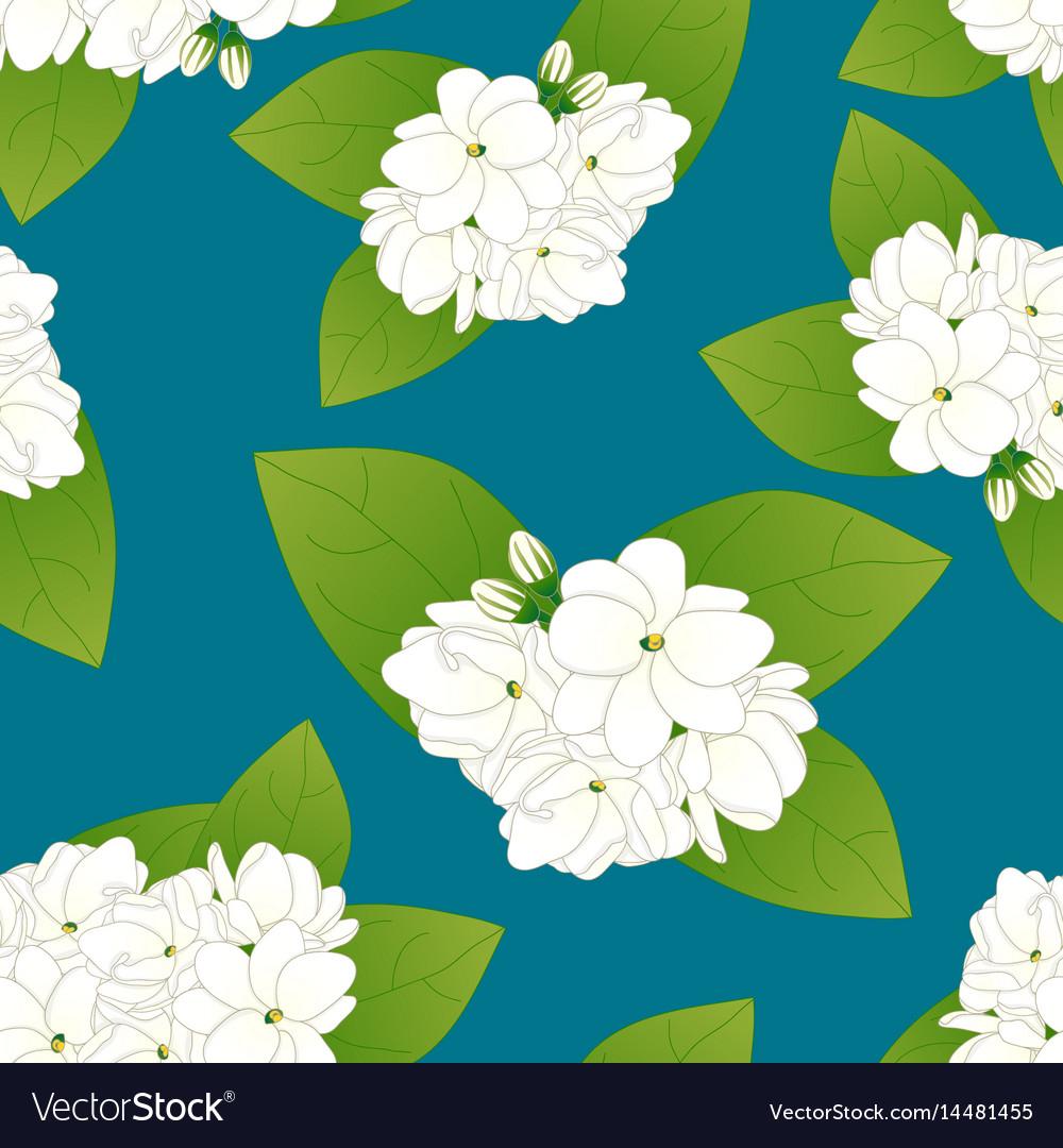 Arabian jasmine on indigo blue background vector image izmirmasajfo