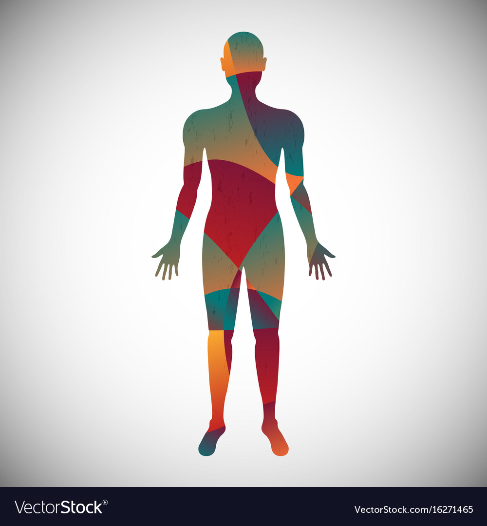 human body color abstract style royalty free vector image vectorstock
