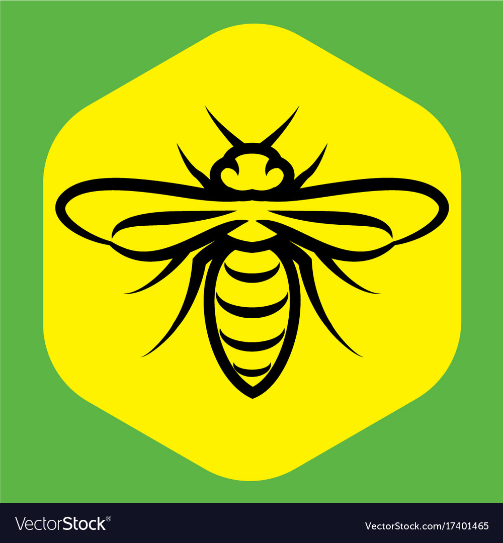 Linear pattern with a bee on the honeycomb vector image