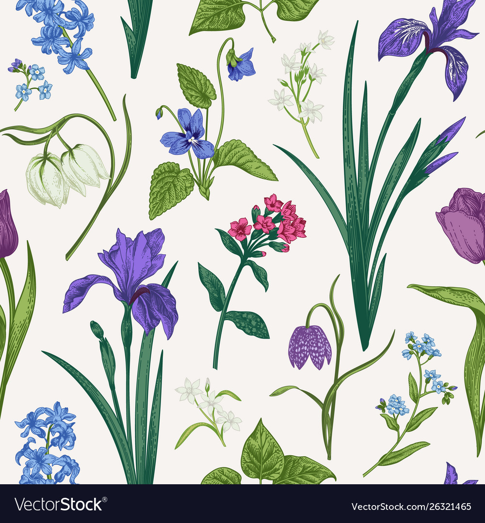 Seamless pattern with flowers and herbs