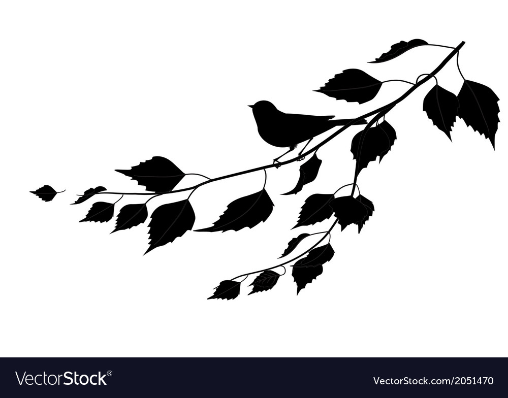 Bird on a branch silhouette vector image