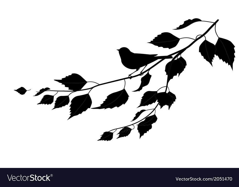 Bird on a branch silhouette