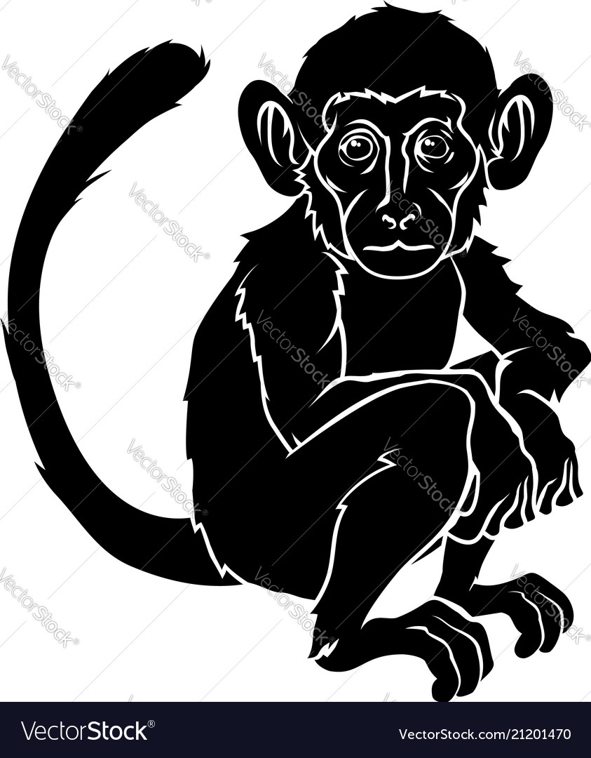 95635e3ff Stylised monkey Royalty Free Vector Image - VectorStock