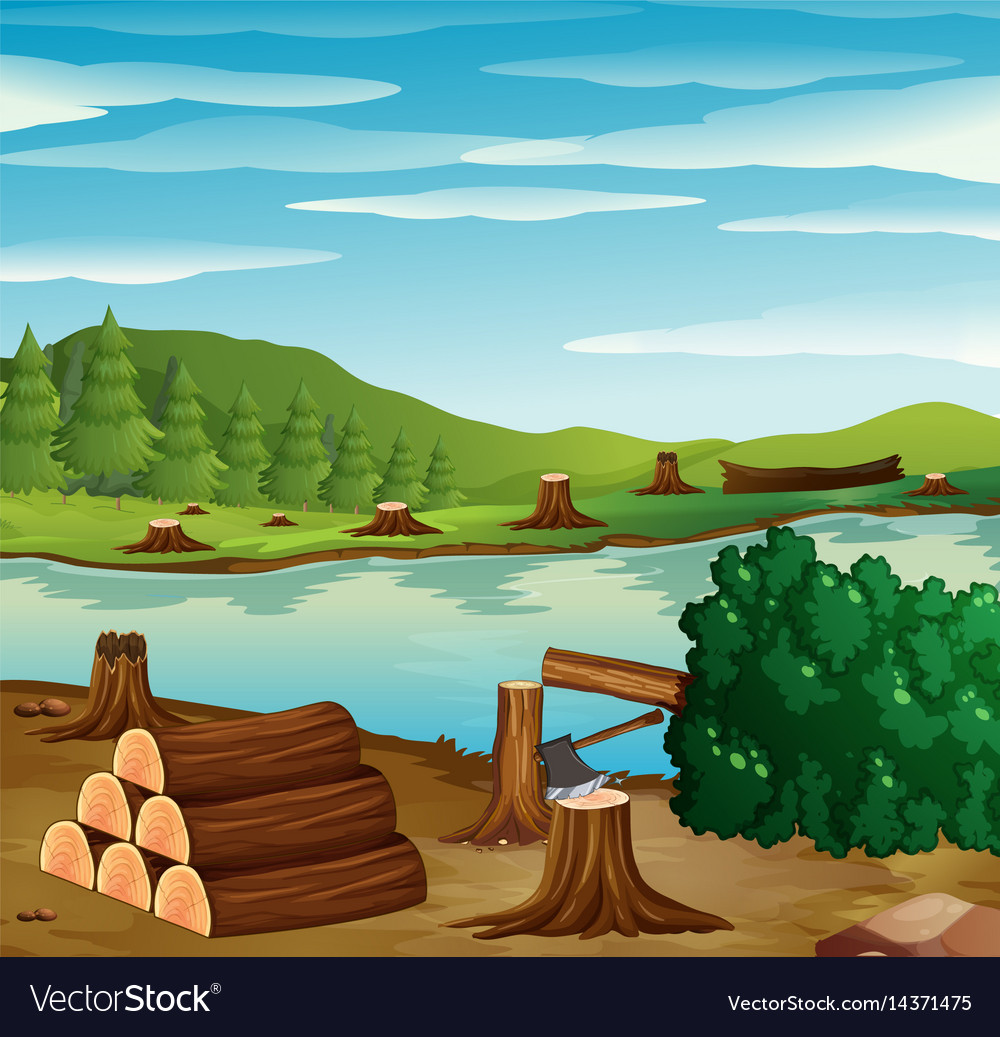 River scene with chopped woods on the banks