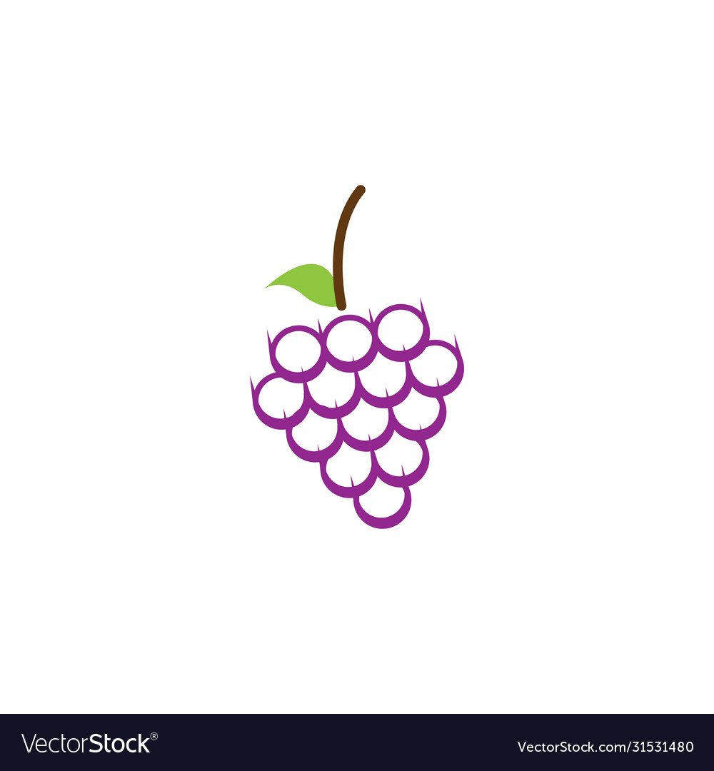 Grape fruit graphic design template isolated