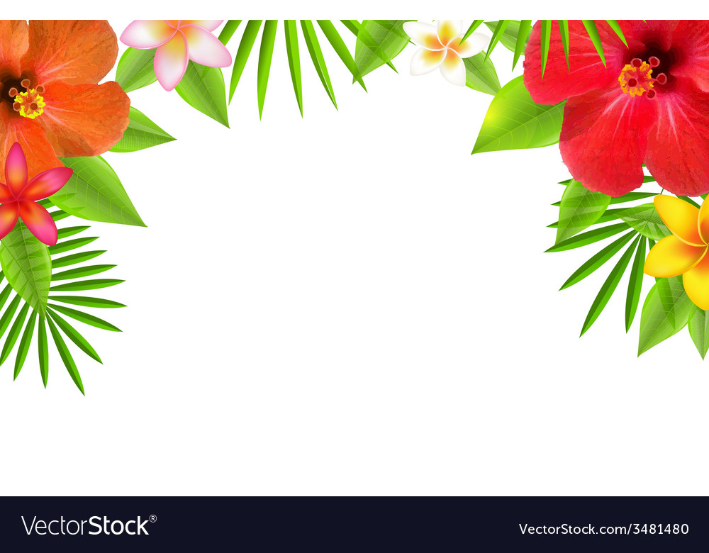 tropical flowers border royalty free vector image rh vectorstock com Lei Border Clip Art Summer or Hawaii Clip Art