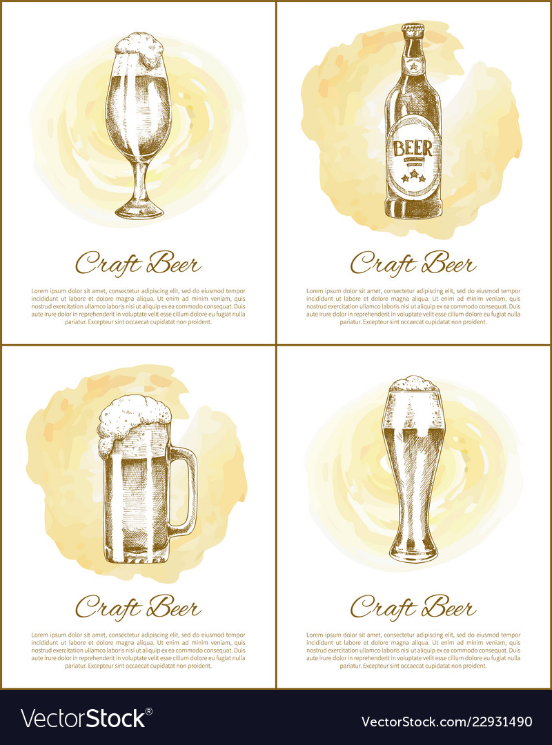 Craft beer objects set hand drawn sketches