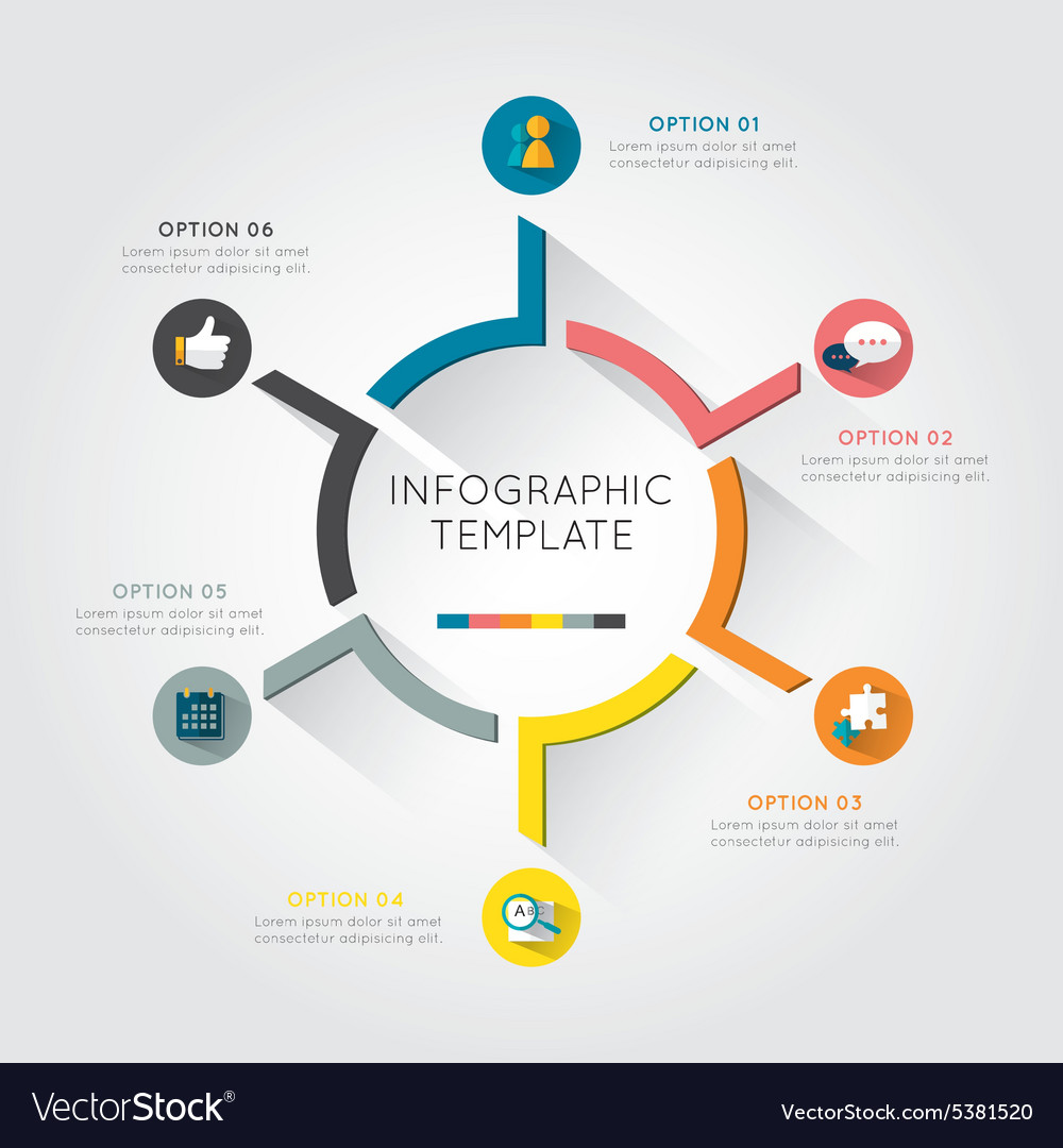 infographic template colorful circular royalty free vector