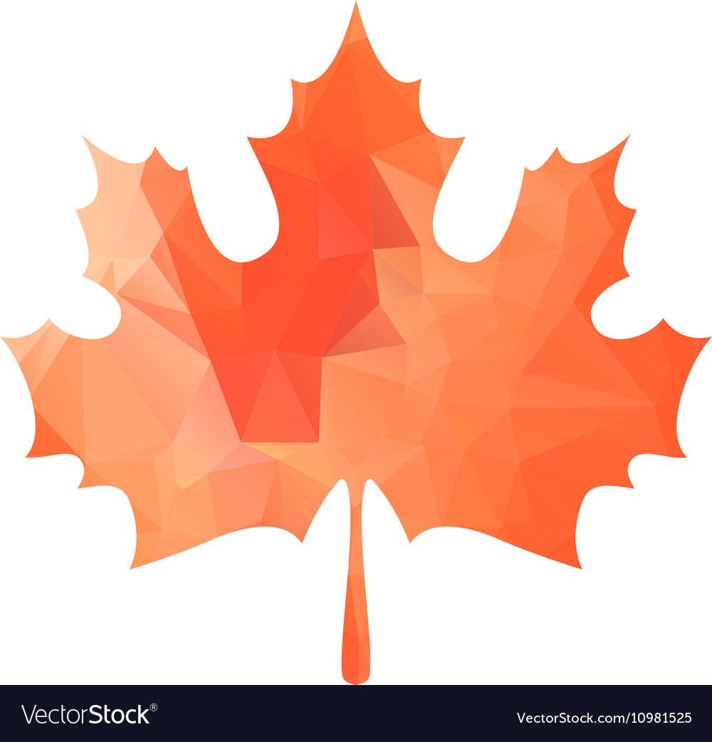 Abstract Maple Leaf Silhouette with Pattern