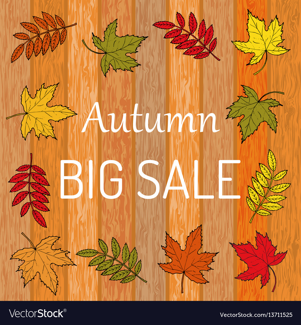 Autumn sale poster on wood background