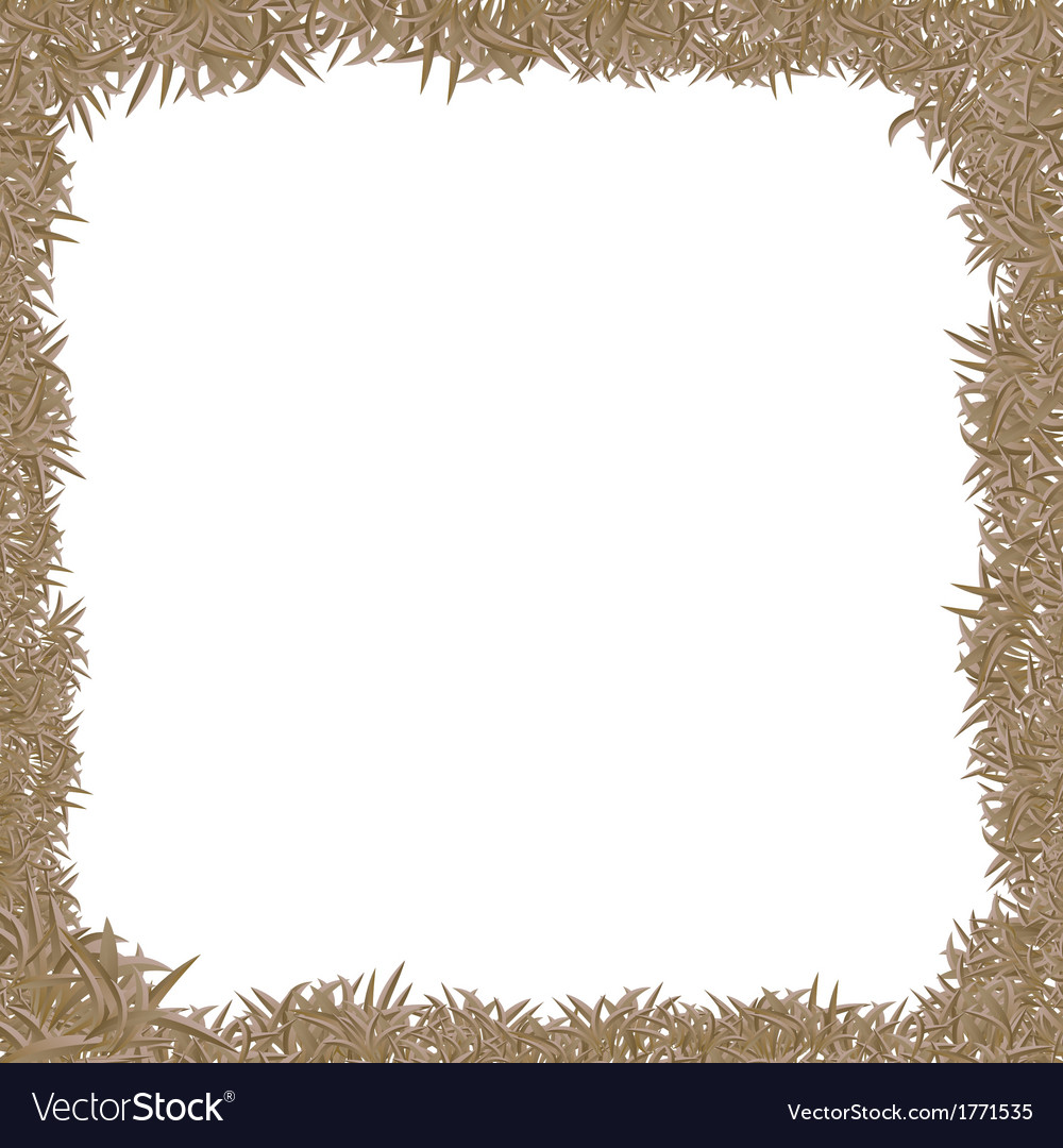 Dry grass frame vector image