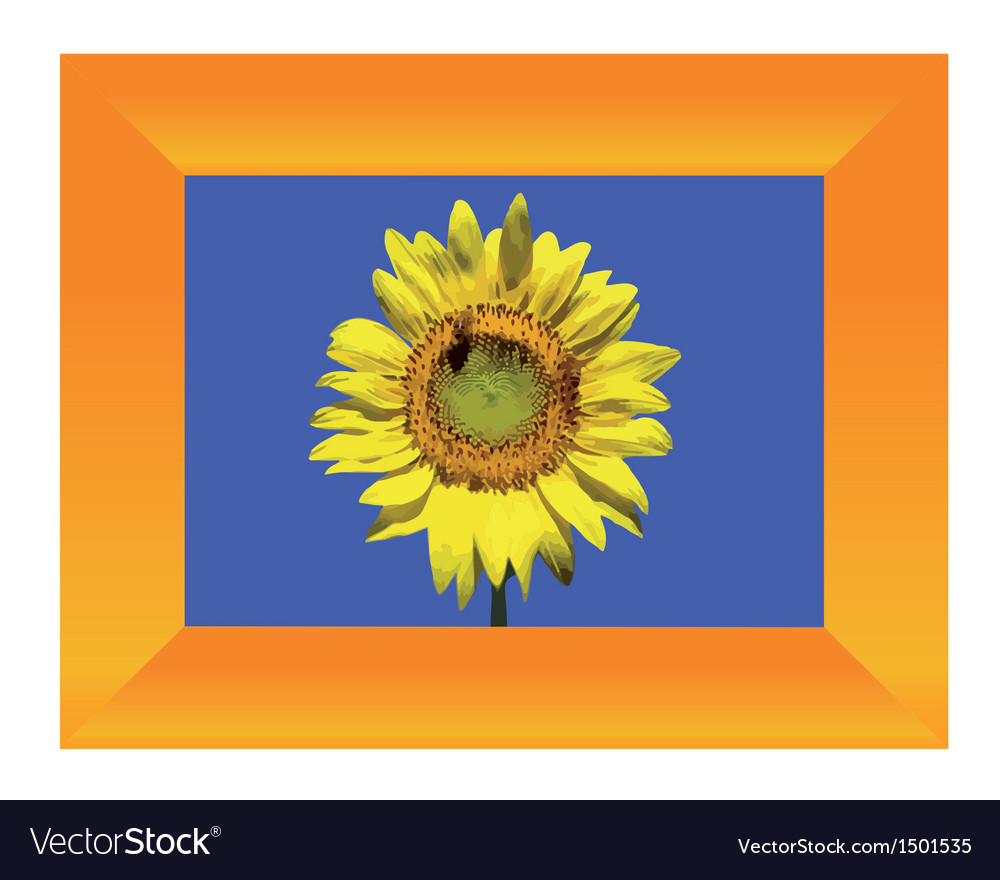 Sunflower in frame Royalty Free Vector Image - VectorStock