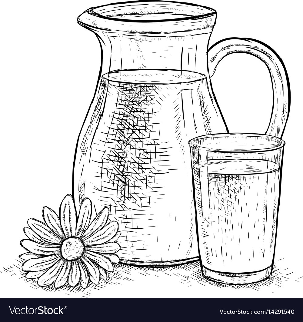 Hand drawn milk jug and glass of milk with daisy