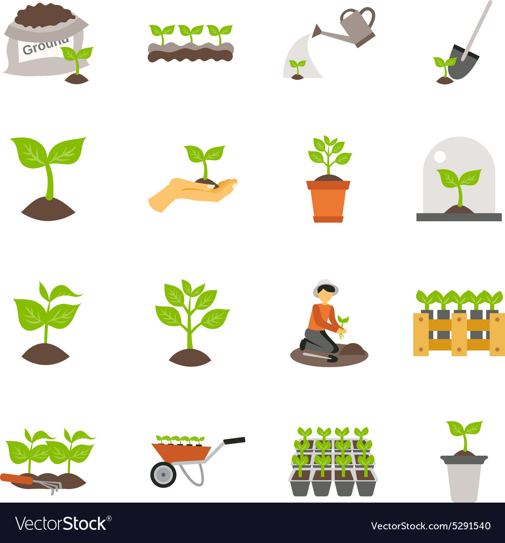 Seedling Flat Icons Set vector image