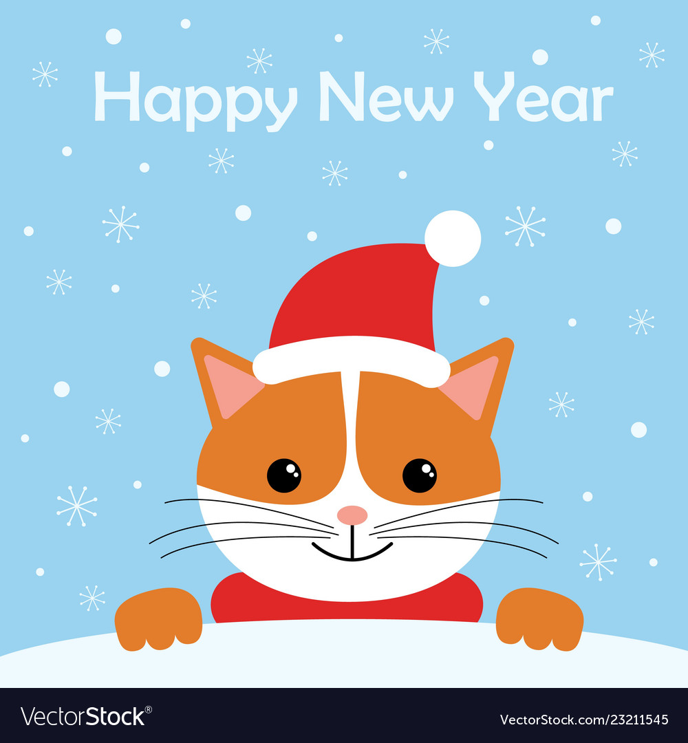 Greeting card with cute cat wear winter outfits