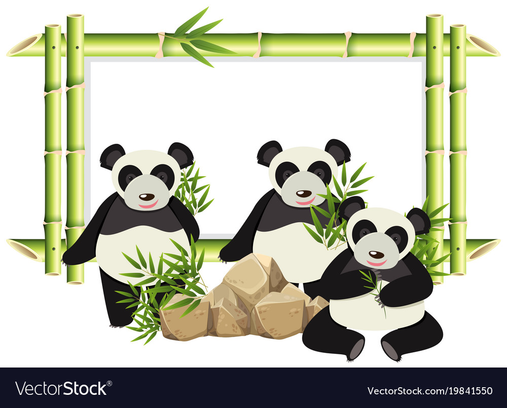 border template with cute panda and bamboo vector image