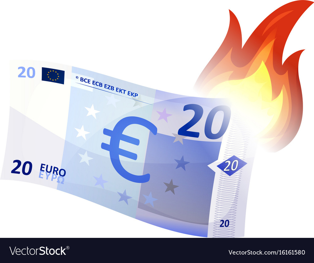 Euro bill burning vector image
