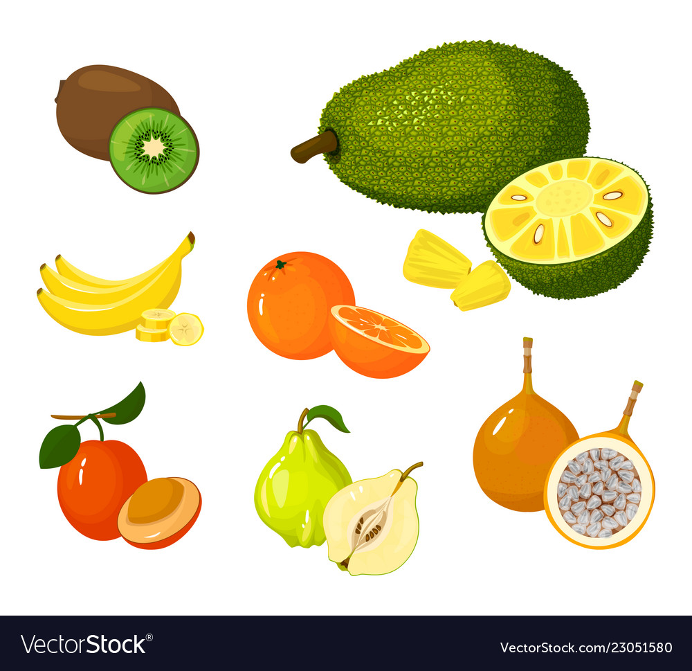 Tropical exotic fruits set icons