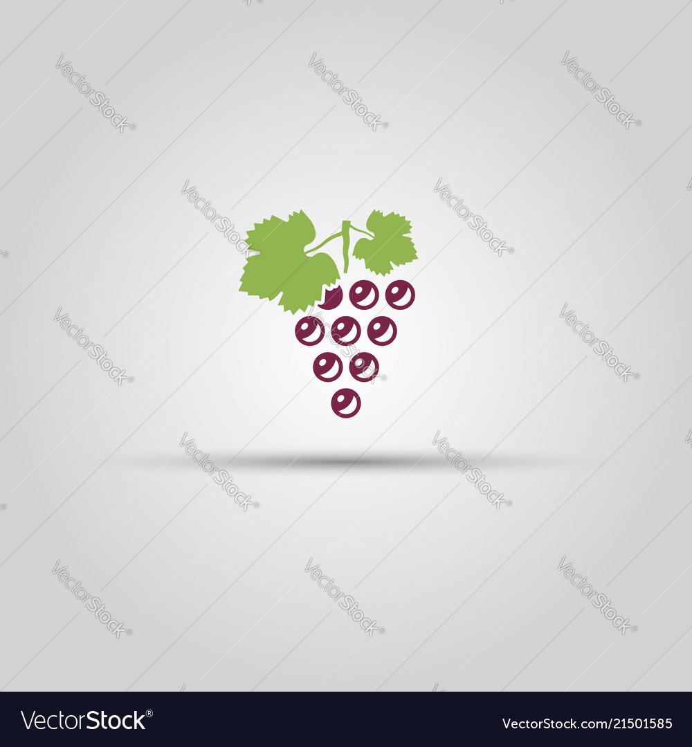 Grape isolated colored icon