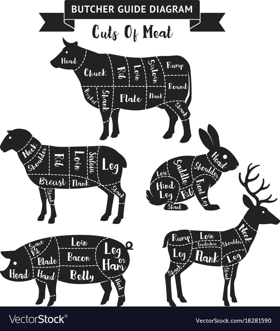 Butcher guide cuts of meat diagram