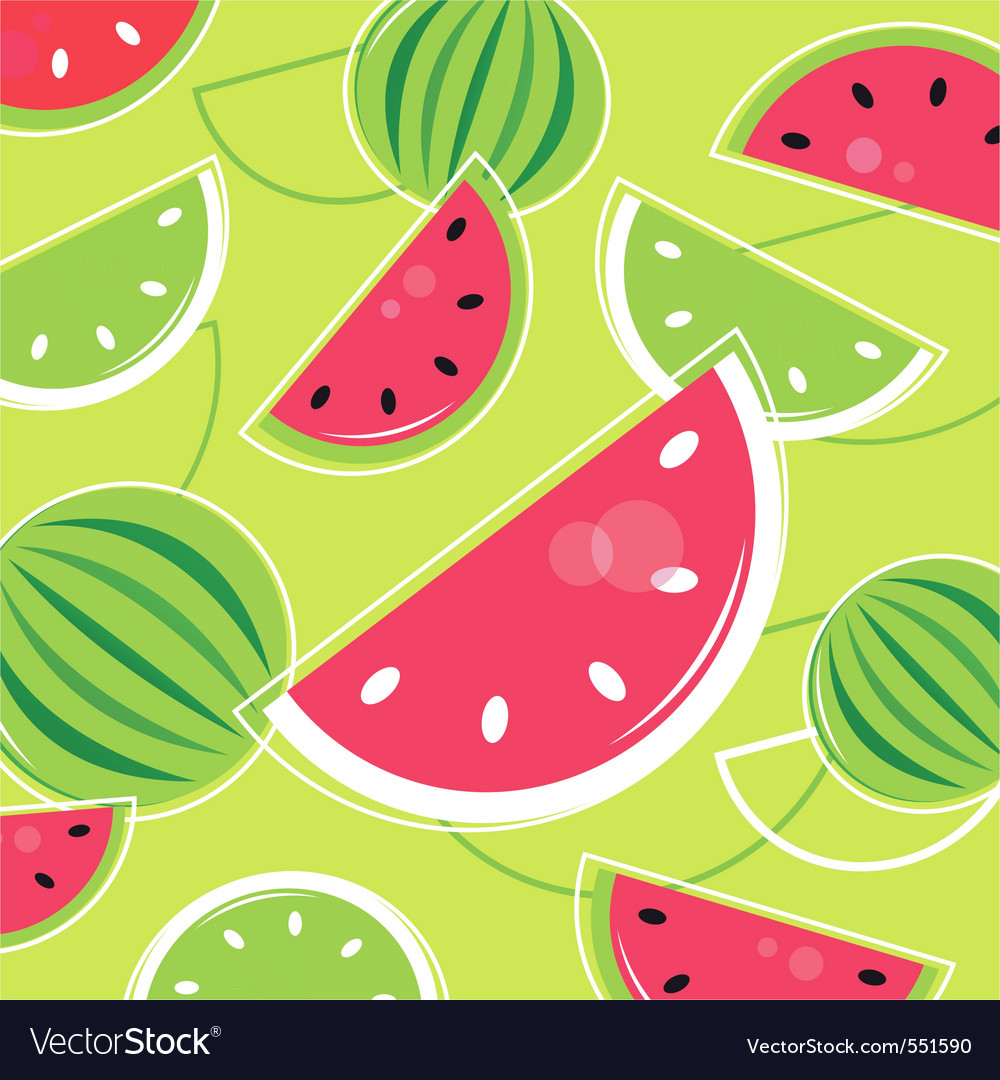 Melon summer background vector image