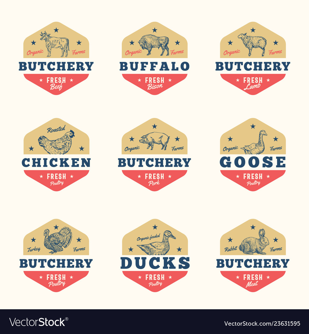 Organic meat and poultry abstract signs