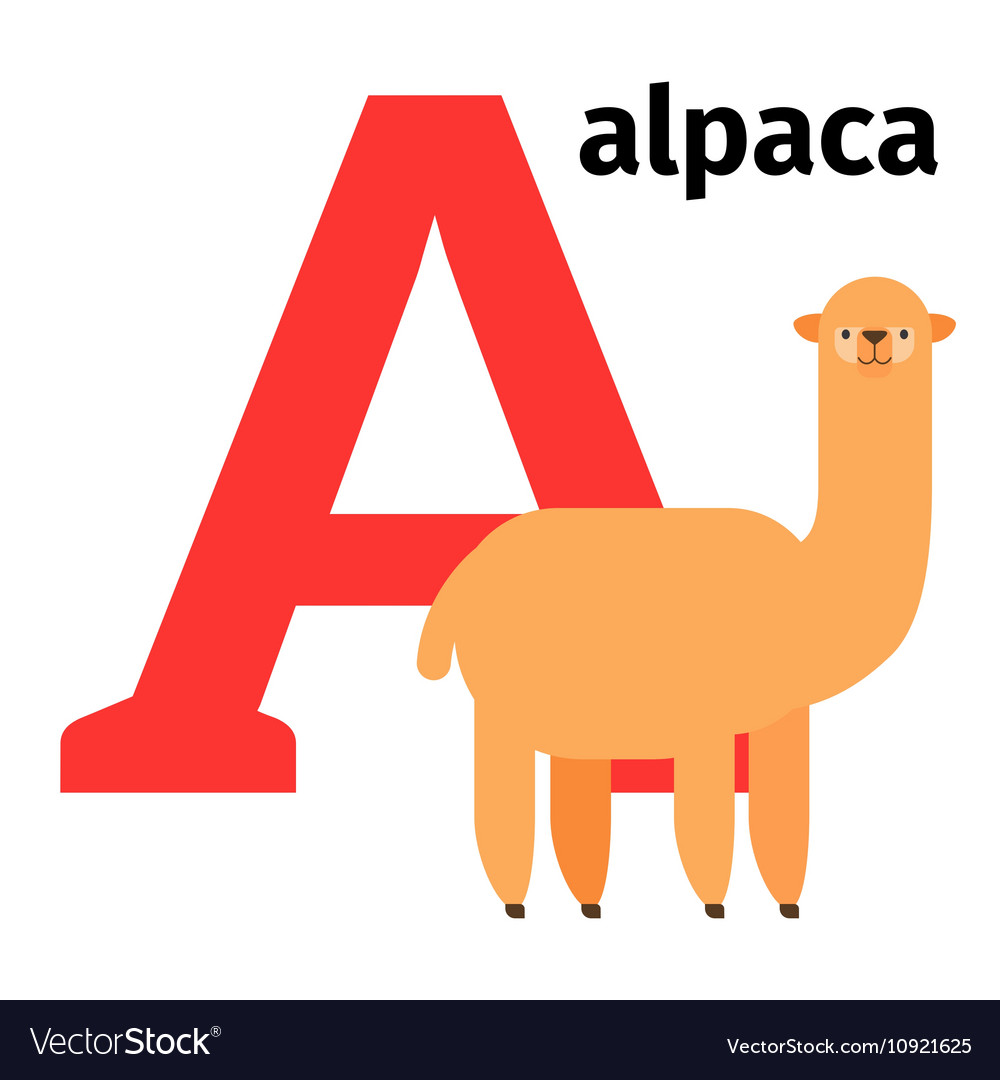 English animals zoo alphabet letter A vector image