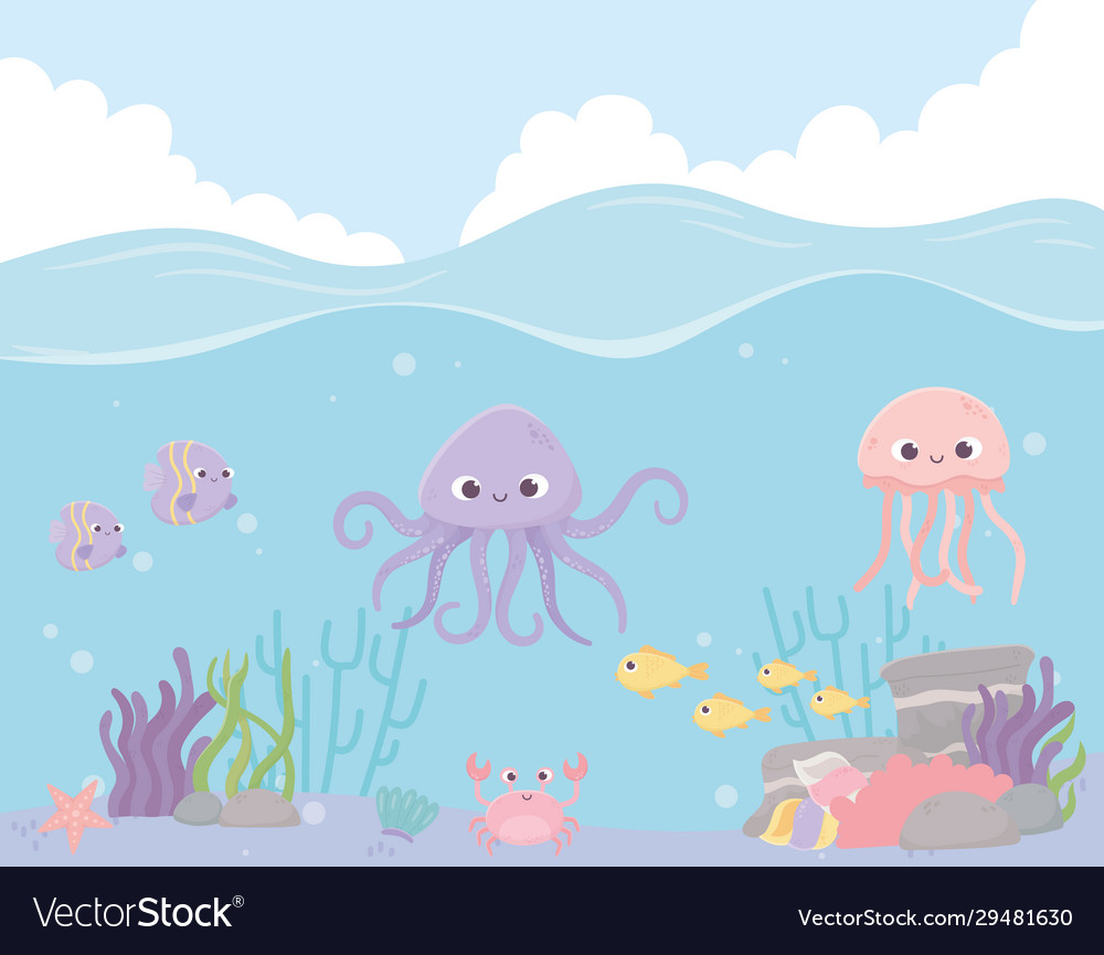 Octopus jellyfish fishes crab reef coral under the