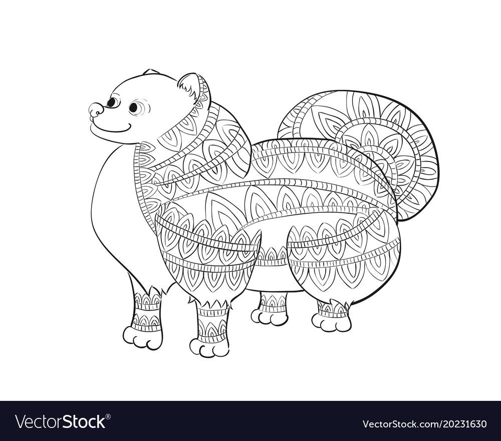 Zen tangle pomeranian zentangle spitz coloring vector image