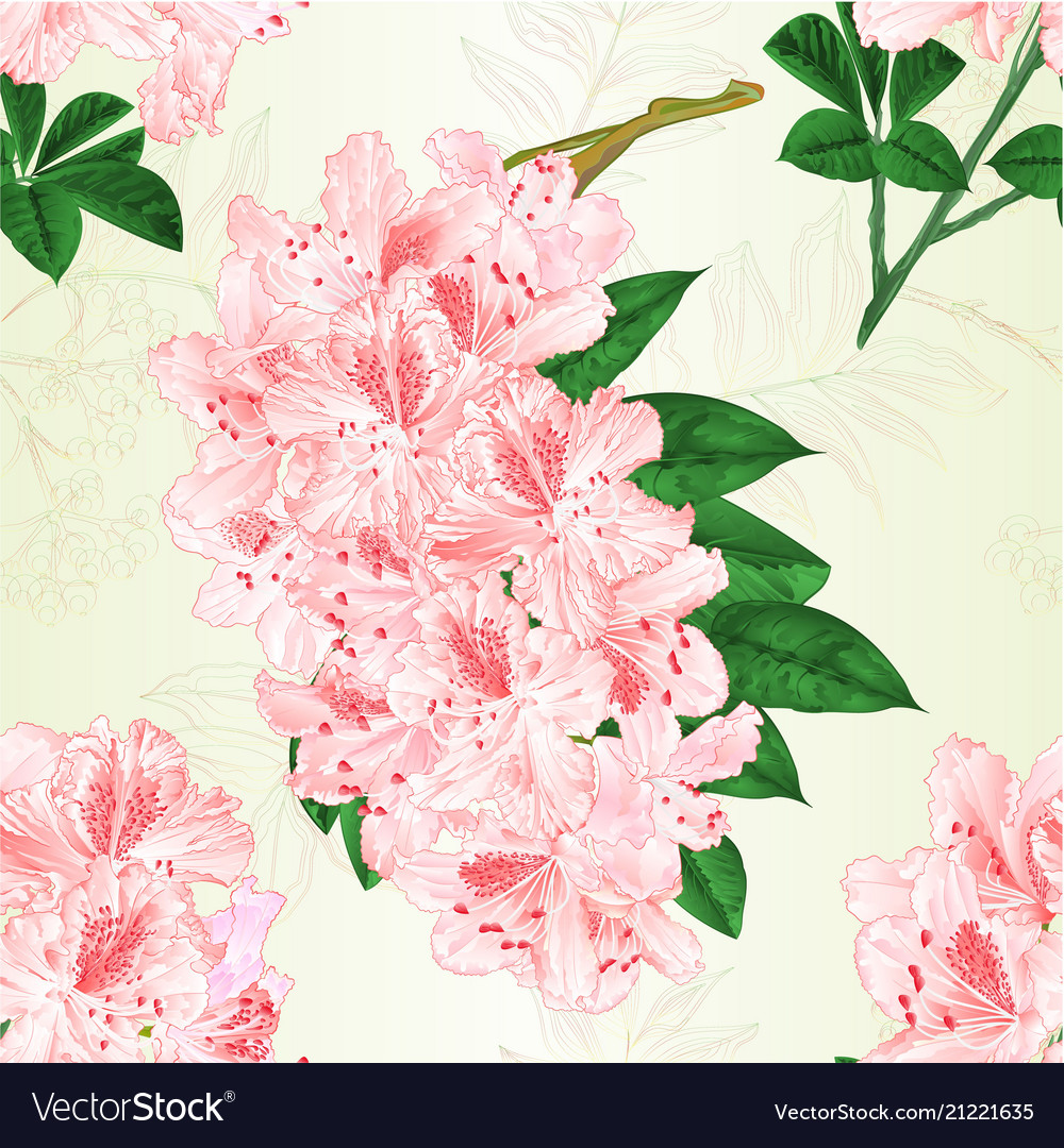 Seamless texture flowers light pink rhododendrons
