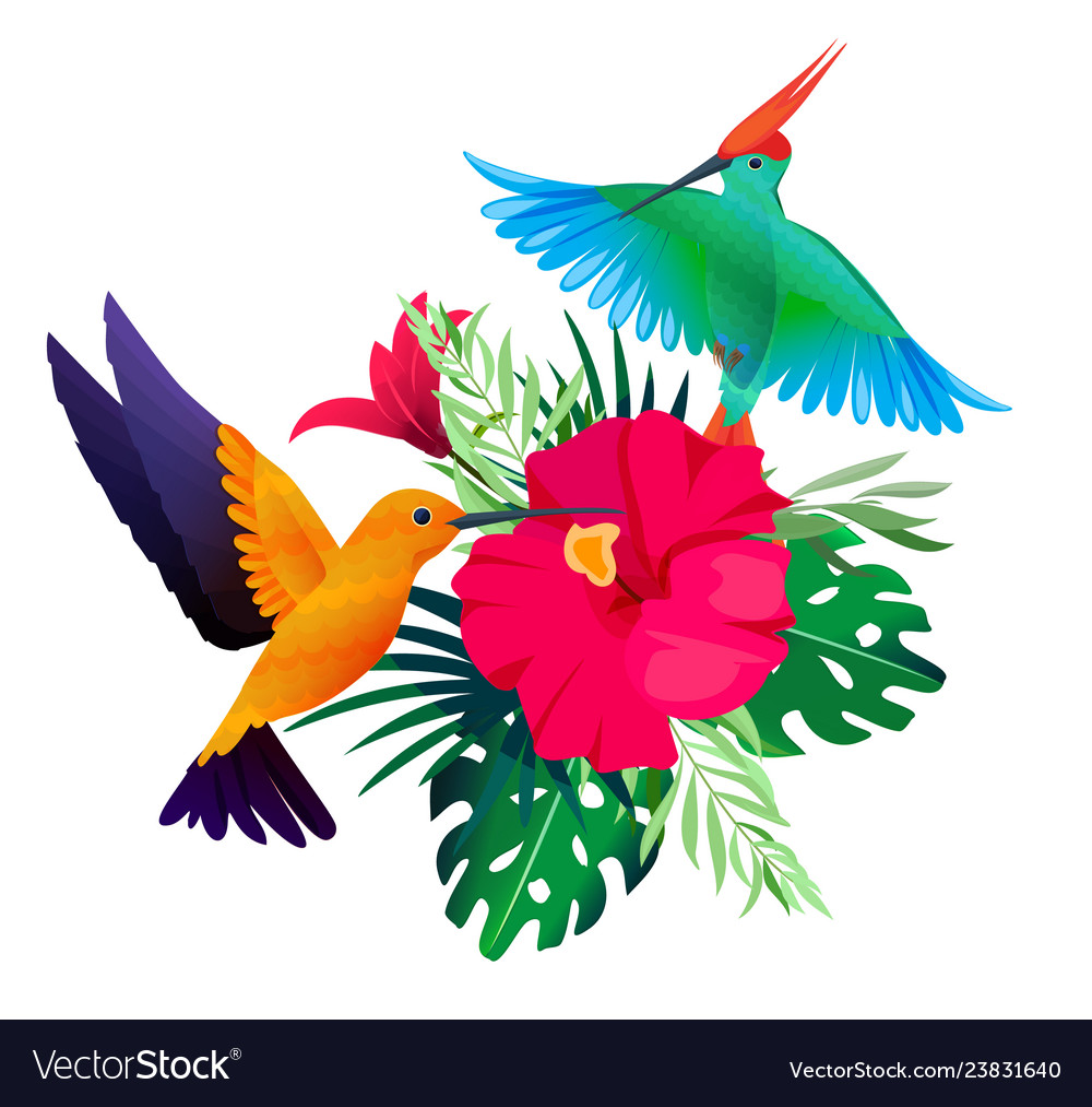 Tropical birds plants exotic colored background
