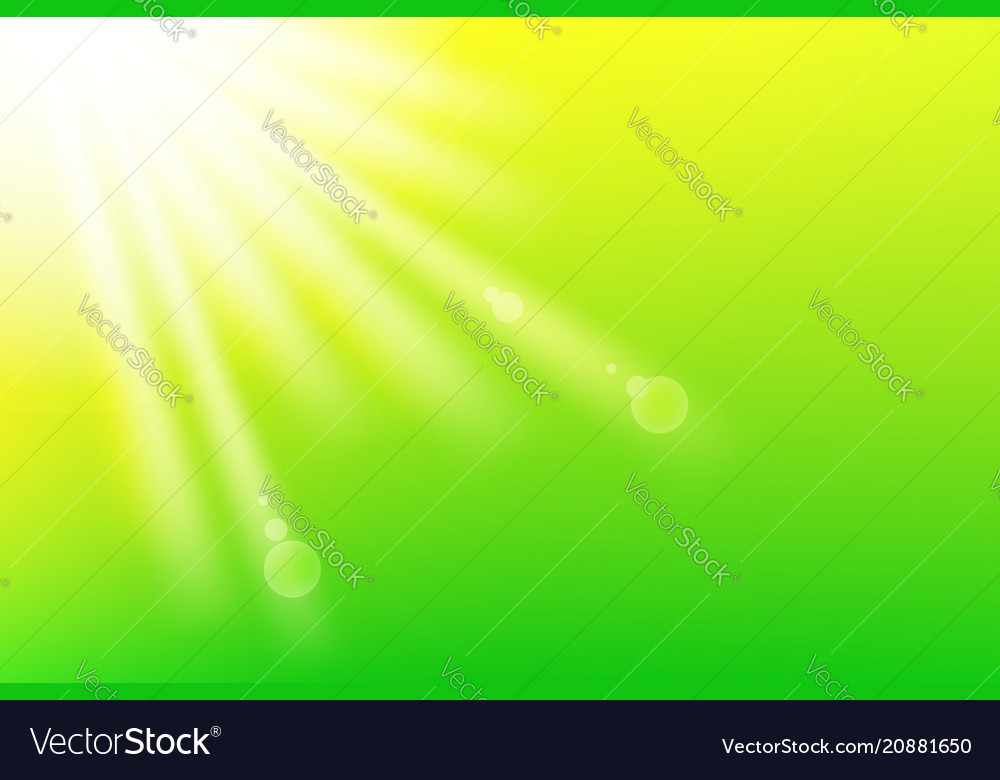 Fresh green background with sunlight