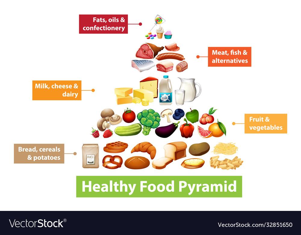 Healthy Food Pyramid Chart Royalty Free Vector Image