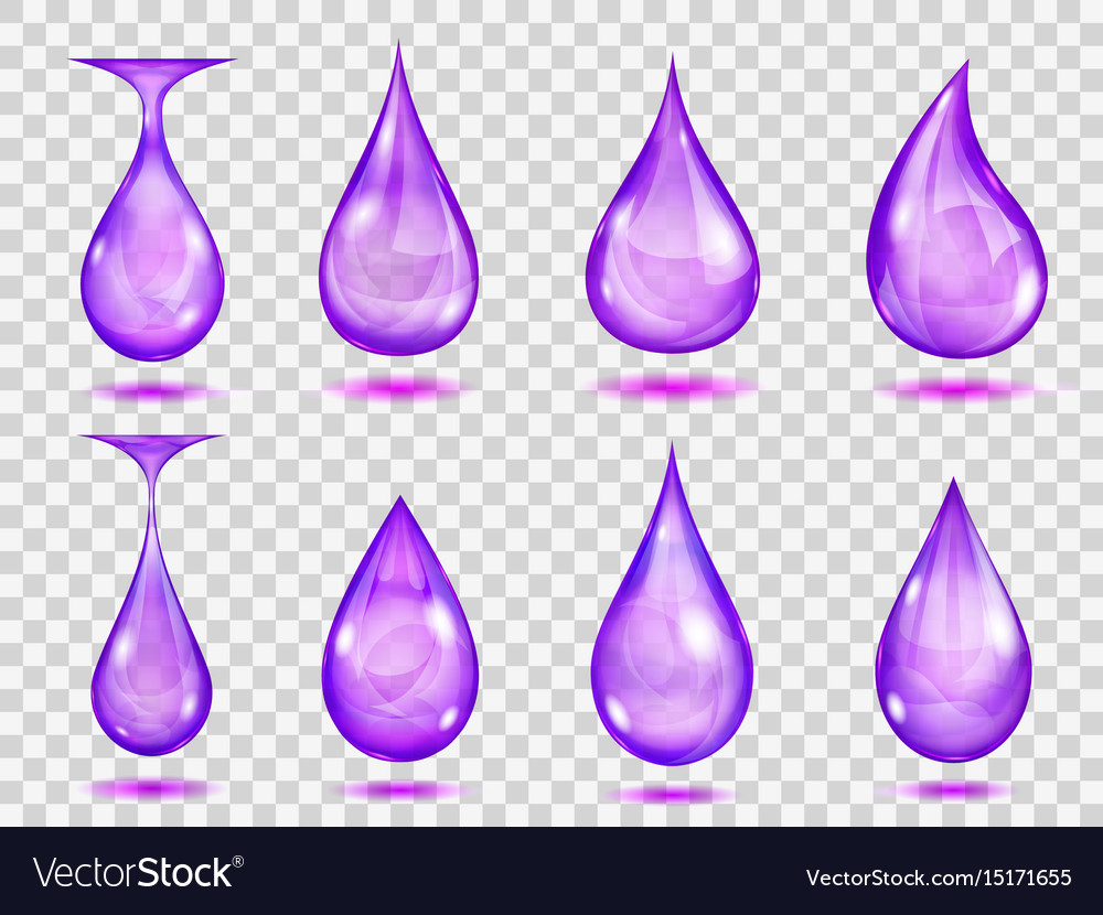 Transparent purple drops vector image