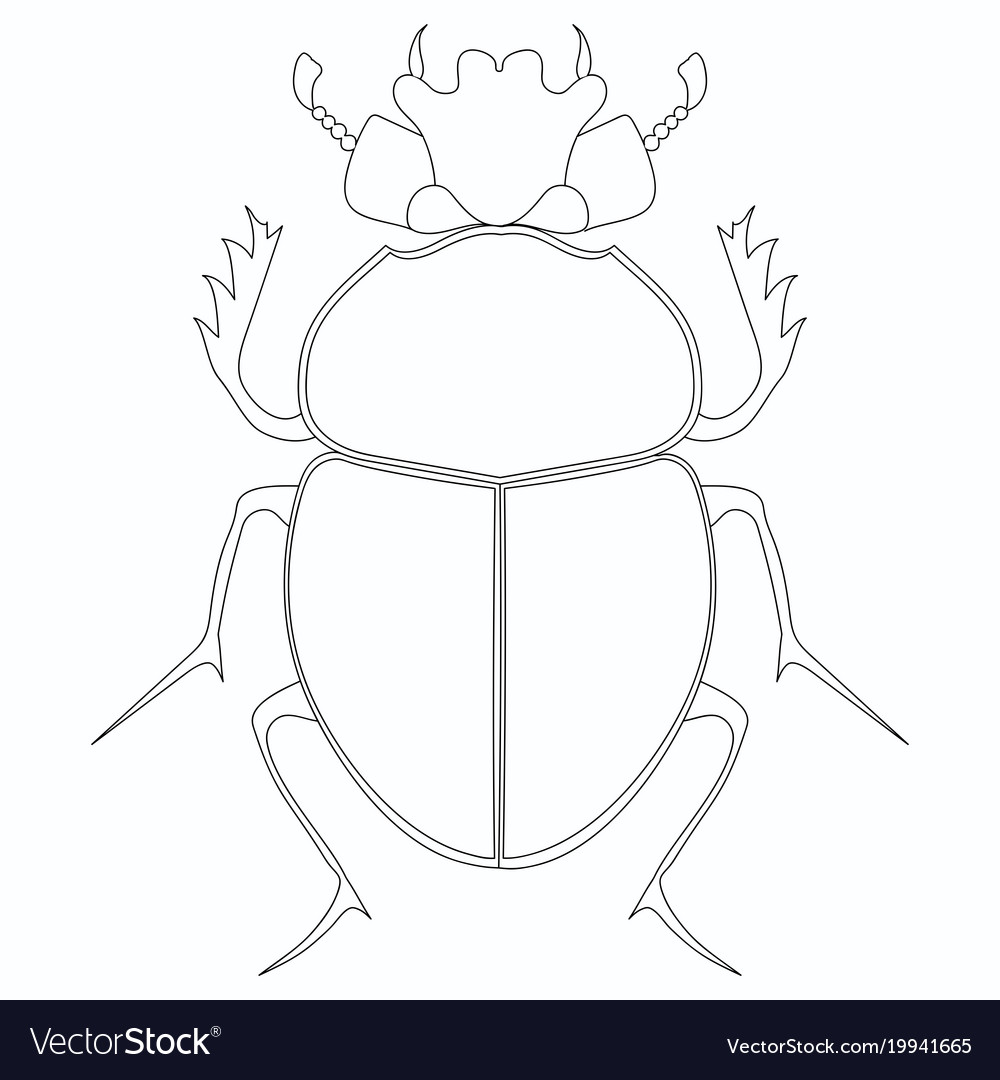 Coloring Egyptian Scarab Beetle Vector Image